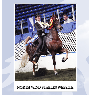 North Wind Stables Website